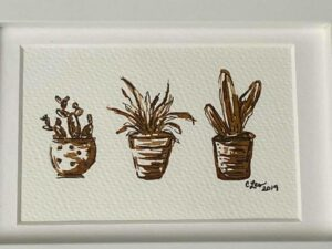 Paint Succulents with Coffee